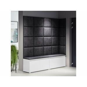 Eka Předsíňová stěna s čalouněnými panely Trinity 3 - Bilý botník / Černé panely